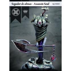 Assassin Soul