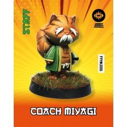 Coach Miyagi